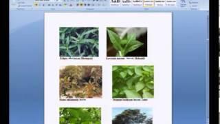 Mod-01 Lec-10 Lecture-10 Natural Dyes