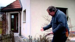 #318 Schneiden im Garten 2011 Familie Boeni 3v5 - Schnitt einer Beetrose