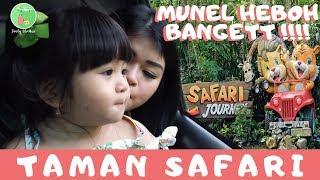 Video Moonella Heboh di Taman Safari! MP3, 3GP, MP4, WEBM, AVI, FLV Mei 2018