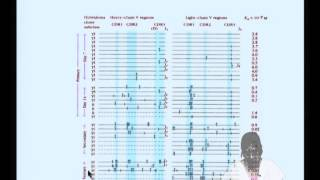 Mod-05 Lec-10 Generation Of Antibody Diversity
