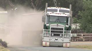 Deniliquin Australia  city photos : Australian Trucks: Road Trains and B Doubles at Deniliquin