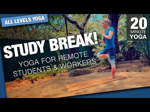 Study Break – Yoga for Remote Students & Workers – Five Parks Yoga