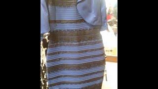 نبض الشارع - لون الفستان الذي شغل بال الجميع !!