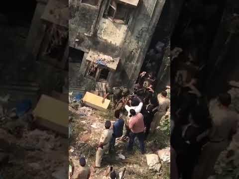 العرب اليوم - شاهد: أب شجاع يتصدى لنمر هاجم ابنه الرضيع وحاصره داخل منزله