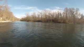 Berrien Springs (MI) United States  city photos gallery : St. Joe River Steelhead - Berrien Springs, Mi