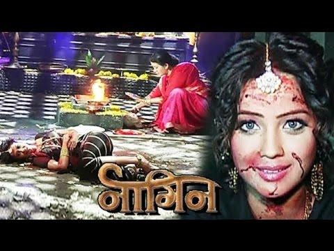 Video Nagin: Shivanya Saves Shesha From Guru Maa download in MP3, 3GP, MP4, WEBM, AVI, FLV January 2017