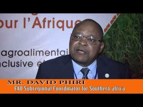 Interview MR CHIMIMBA DAVID PHIRI PhD FCCS - SUBREGIONAL COORDINATOR FOR SOUTHERN AFRICA