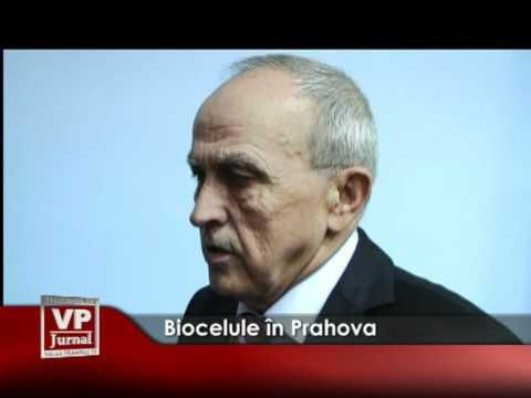 Biocelule în Prahova
