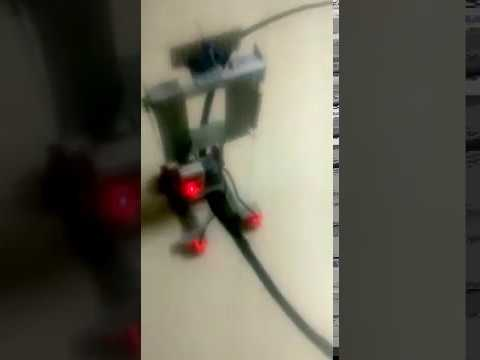 Self propelled robot walking on a black curve line