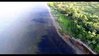 Port Saint Joe United States  city pictures gallery : Cape San Blas FL Port St. Joe FL drone video