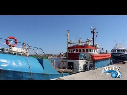 """Sequestro Iuventa, Montenegro """" attenzione a fare di tutta un'erba un fascio"""" NewsAgtv"""