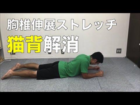 胸椎を伸展させるストレッチ!猫背改善、正しい姿勢をキープしよう!