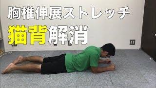 【猫背改善!】胸椎を伸展させ呼吸を楽にするストレッチ