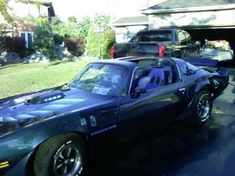 1981 Pontiac Trans Am pictures