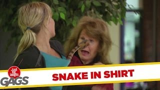 Cobra in Shirt Scary Prank