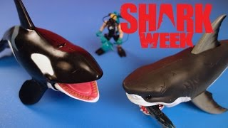 Shark Week!  Animal Planet Mega Shark and Orca Encounter