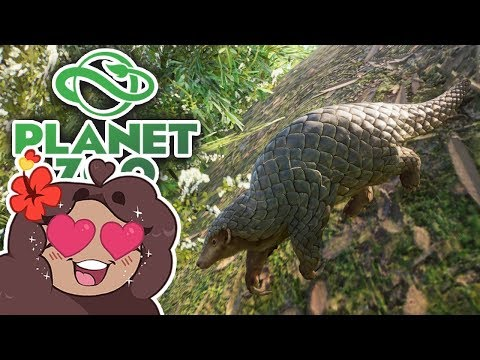 Preparing for PANGOLINS!! 🐼 Daily Planet Zoo! • Day 11