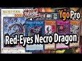 Eyes Necro Dragon (YgoPro)