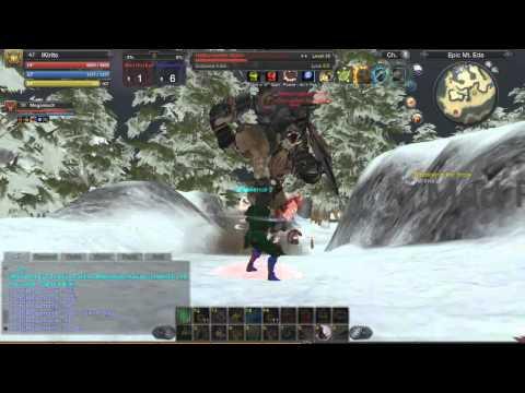 Wild RaiderZ - A possible way to solo Hellscreamer Ronin