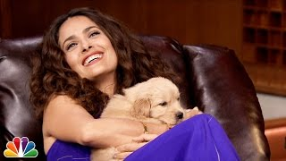 Video Pup Quiz with Salma Hayek MP3, 3GP, MP4, WEBM, AVI, FLV April 2018