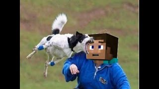 fail compilation, but with minecraft steve shouting