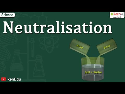 Neutralization Reaction Of Acids and Bases | Iken Edu