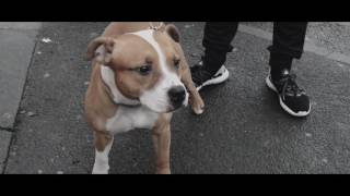Jan 28, 2017 ... BGMedia // Connor T // The Real Central Drive! (Afghan Dan Send) ... Younganz nFusion vs Connor T  Keeping It 140 Grime Clash - Duration:...