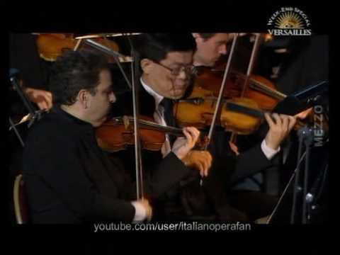 Michel Plasson - Berlioz - La Damnation de Faust - Versailles - 2009