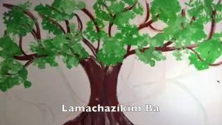 Download Lagu Etz Chayim Hi (closing the ark at synagogue): learn Jewish song Mp3