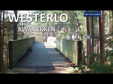 WESTERLO- KWAREKKEN