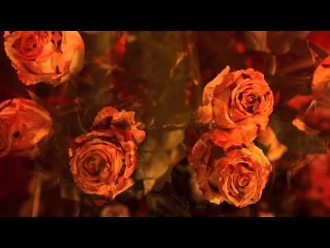 'Fleurs d'Amour' de Nicole Coppey
