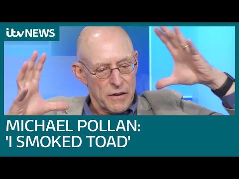 Michael Pollan: Magic mushrooms and LSD could help solve mental health crisis | ITV News