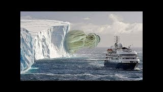 Video 10 Most Incredible Things Found in Antarctica MP3, 3GP, MP4, WEBM, AVI, FLV April 2019