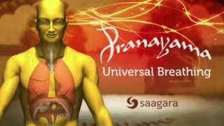 Universal Breathing: Pranayama YouTube video