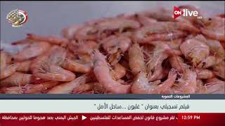 """""""غليون ساحل الأمل"""".. فيلم تسجيلى عن أكبر مشروع للاستزراع السمكى"""