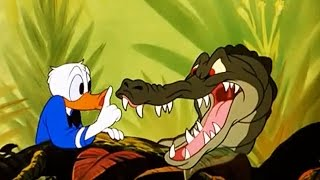 Video Disney's Old Time Animal Classics - Crazy Toon Collection with Mickey, Donald, Pluto, Goofy! MP3, 3GP, MP4, WEBM, AVI, FLV Juli 2018