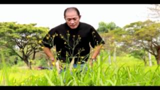 Download Lagu Fr. Jovil 25th Sacerdotal Anniversary Music Video Mp3