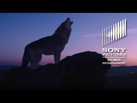 Trailer film Wolf Totem