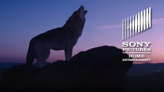 Wolf Totem   Official Trailer