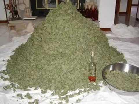 L.S.I. - Marihuana song