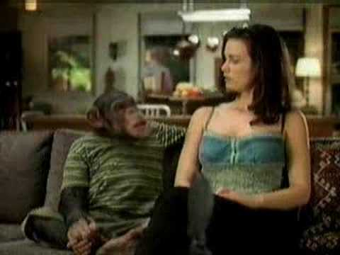 Lake Ozark — Monkey Budweiser Commercial — Funny Comedy