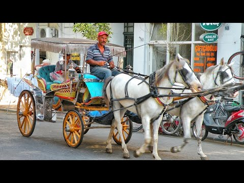 No more Horse Carriage Rides on the Princes' Islands, Istanbul