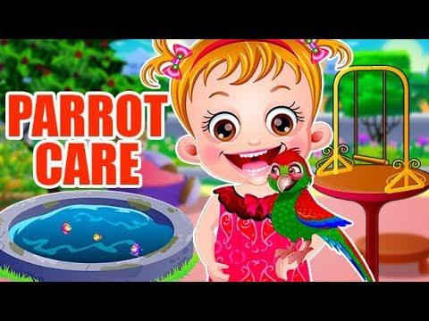 Video of Baby Hazel Parrot Care