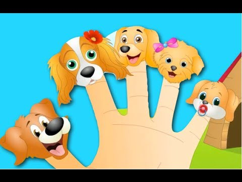 The Finger Family Dog Family Nursery Rhyme | Kids Animation Rhymes Songs