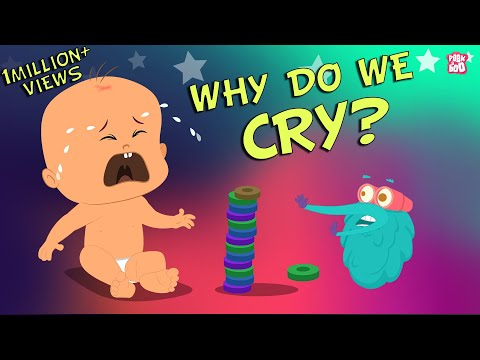 Why Do We Cry - The Dr. Binocs Show | Best Learning Videos For Kids | Peekaboo Kidz