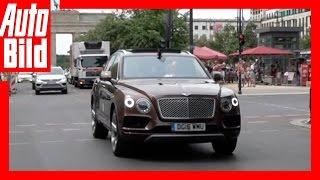 Video: Bentley Bentayga - Tour Etappe 8 / Videotagebuch / Test / Review / Probefahrt by Auto Bild
