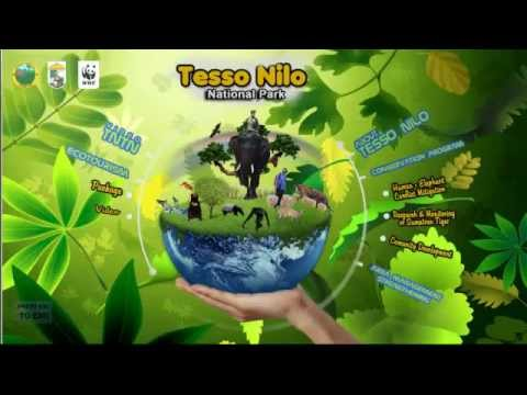 WWF Interactiv – Tesso Nilo National Park. Riau – Indonesia