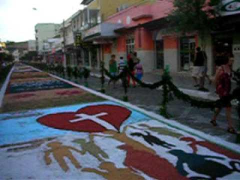 TAPETE BAIXO GUANDU 2009 - 3