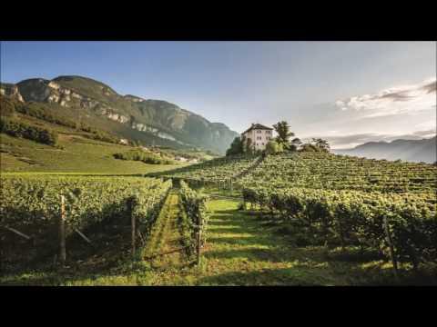 Weinland Südtirol - Unterland
