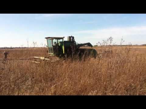 Illinois Soybean Harvest 2016